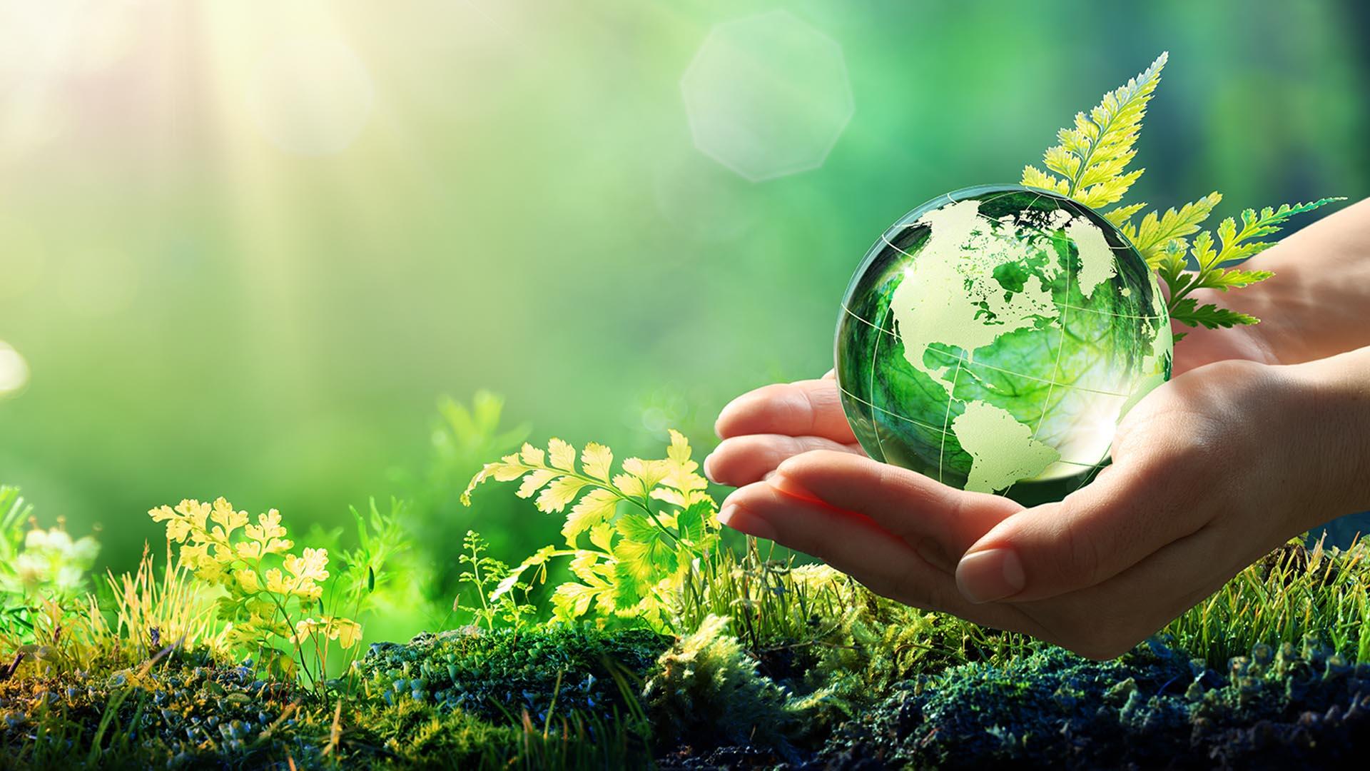 DFC Group Nachhaltigkeit